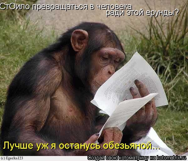 Котоматрица: СтОило превращаться в человека ради этой ерунды? Лучше уж я останусь обезьяной...