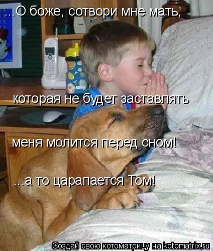 Котоматрица: ...О боже, сотвори мне мать, которая не будет заставлять меня молится перед сном! ...а то царапается Том!