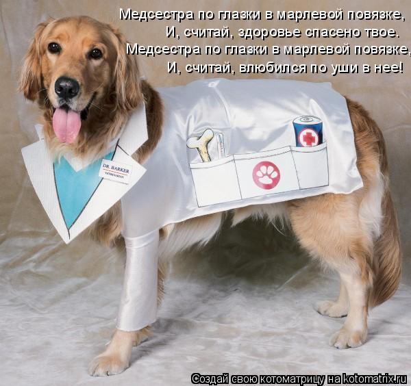 Котоматрица: Медсестра по глазки в марлевой повязке, И, считай, здоровье спасено твое. Медсестра по глазки в марлевой повязке, И, считай, влюбился по уши в