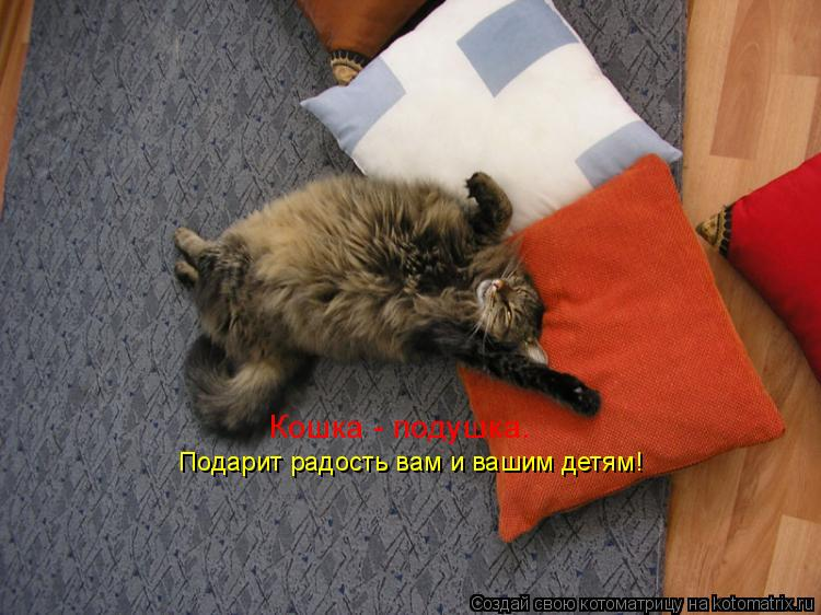 Котоматрица: Кошка - подушка. Подарит радость вам и вашим детям!