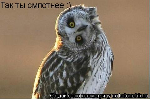 Котоматрица: Так ты смпотнее :)