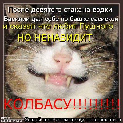Котоматрица: После девятого стакана водки Василий дал себе по башке сасиской и сказал что любит Пушного НО НЕНАВИДИТ  КОЛБАСУ!!!!!!!!!