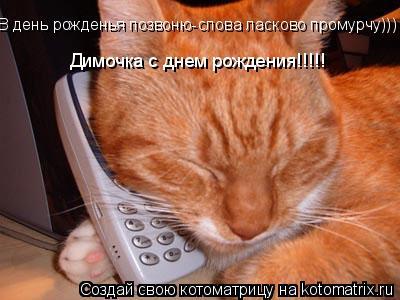 Котоматрица: В день рожденья позвоню-слова ласково промурчу))) Димочка с днем рождения!!!!!