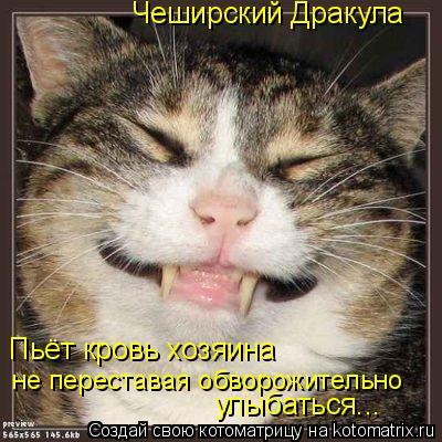 Котоматрица: Чеширский Дракула Пьёт кровь хозяина не переставая обворожительно улыбаться...