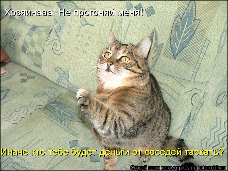 Котоматрица: Хозяинааа! Не прогоняй меня! Иначе кто тебе будет деньги от соседей таскать?