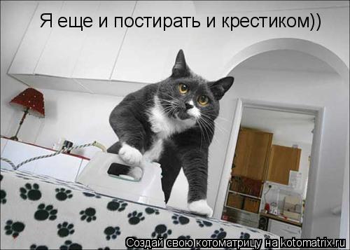Котоматрица: Я еще и постирать и крестиком))