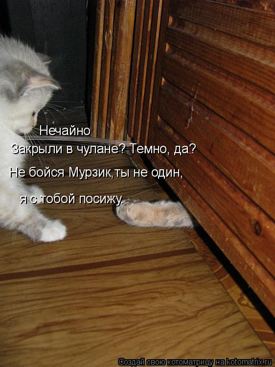 Котоматрица: Закрыли в чулане? Темно, да? Не бойся Мурзик,ты не один, я с тобой посижу. Нечайно