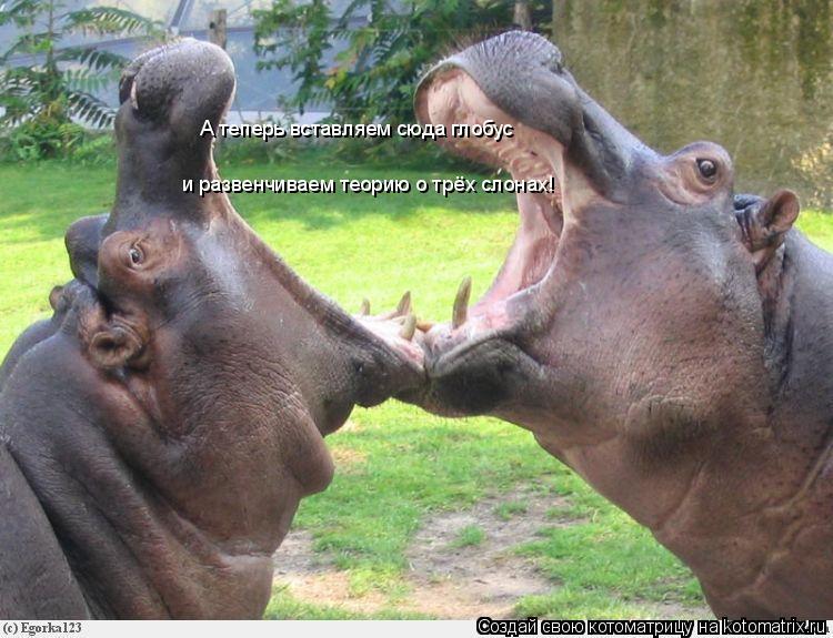 Котоматрица: А теперь вставляем сюда глобус и развенчиваем теорию о трёх слонах!