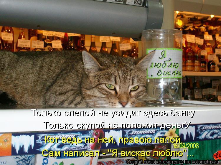 """Котоматрица: Только слепой не увидит здесь банку   Только скупой не положит деньгУ  Сам написал - """"Я вискас люблю""""... Кот ведь на ней, правою лапой,"""