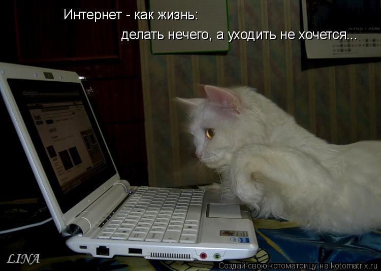 Котоматрица: Интернет - как жизнь: делать нечего, а уходить не хочется...