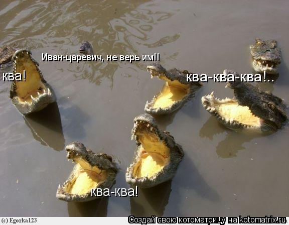 Котоматрица: ква! ква-ква! Иван-царевич, не верь им!! ква-ква-ква!..