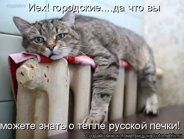 Котоматрица: Иех! городские....да что вы можете знать о тепле русской печки!