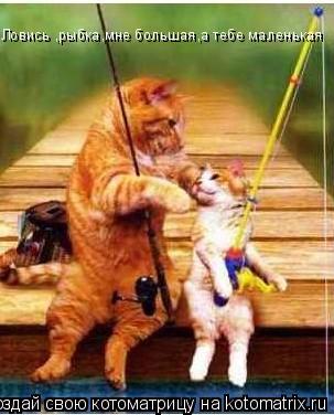 Котоматрица: Ловись ,рыбка,мне большая,а тебе маленькая