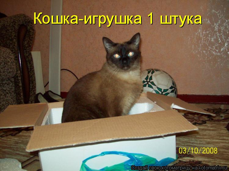 Котоматрица: Кошка-игрушка 1 штука