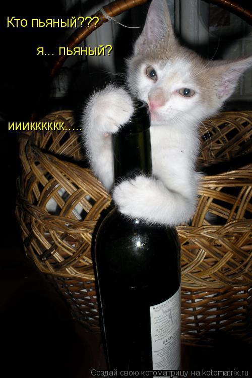 Котоматрица: Кто пьяный??? я... пьяный? ииикккккк.....