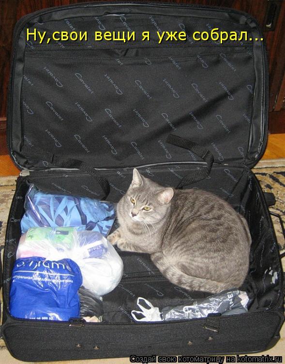 Котоматрица: Ну,свои вещи я уже собрал...