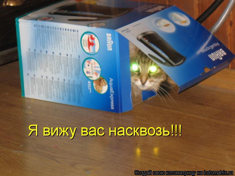 Котоматрица: Я вижу вас насквозь!!!