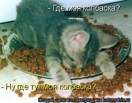 Котоматрица: - Где моя колбаска? - Ну где тут моя колбаска?