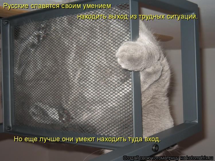Котоматрица: Русские славятся своим умением  находить выход из трудных ситуаций. Но еще лучше они умеют находить туда вход.