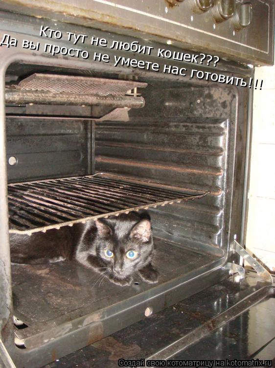 Котоматрица: Да вы просто не умеете нас готовить!!! Кто тут не любит кошек???