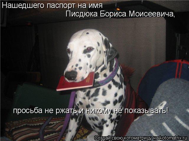 Котоматрица: Нашедшего паспорт на имя  Писдюка Бориса Моисеевича,  просьба не ржать и никому не показывать!