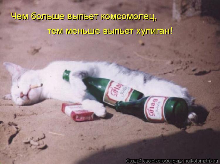 Котоматрица: Чем больше выпьет комсомолец,  тем меньше выпьет хулиган!