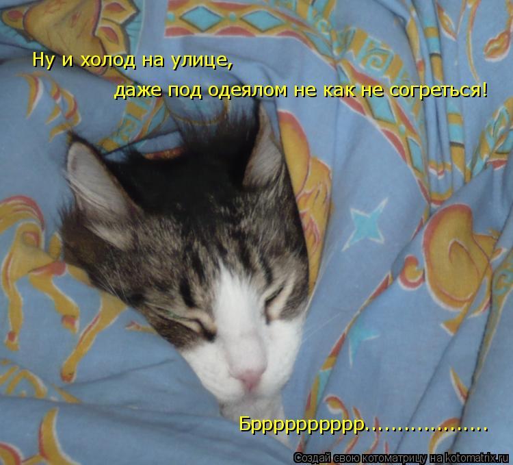 Котоматрица: Ну и холод на улице,  даже под одеялом не как не согреться! Брррррррррр...................