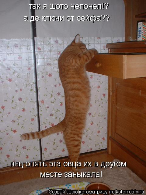 Котоматрица: так я шото непонел!?  а де ключи от сейфа??  ппц опять эта овца их в другом  месте заныкала!
