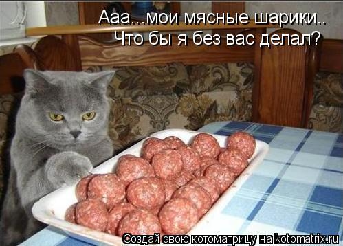 Котоматрица: Ааа...мои мясные шарики.. Что бы я без вас делал?