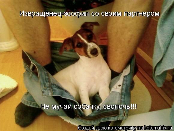 Котоматрица: Извращенец-зоофил со своим партнером   Не мучай собачку, сволочь!!!