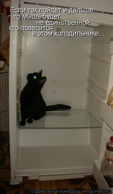 Котоматрица: Если так пойдёт и дальше, то мышь будет  не единственной, кто повесится в этом холодильнике...