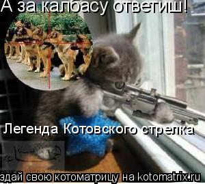 Котоматрица: А за калбасу ответиш! Легенда Котовского стрелка