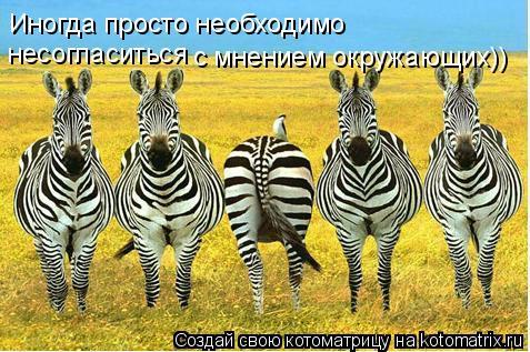 Котоматрица: Иногда просто необходимо несогласиться  с мнением окружающих))
