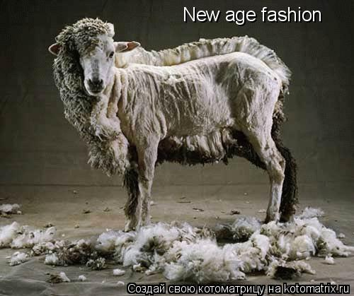 Котоматрица: New age fashion