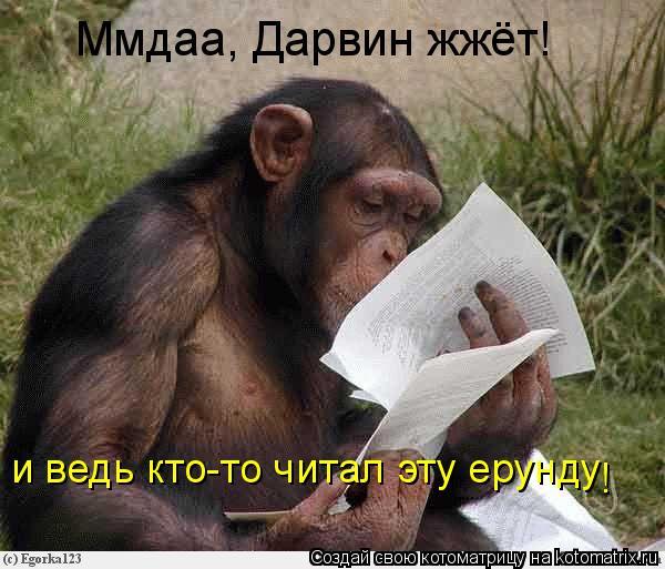 Котоматрица: Ммдаа, Дарвин жжёт! и ведь кто-то читал эту ерунду !