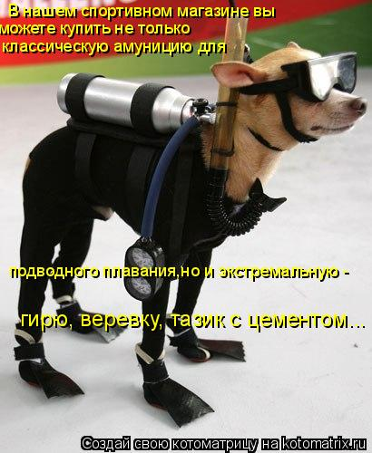 Котоматрица: В нашем спортивном магазине вы  можете купить не только подводного плавания,но и экстремальную - классическую амуницию для  гирю, веревку, т