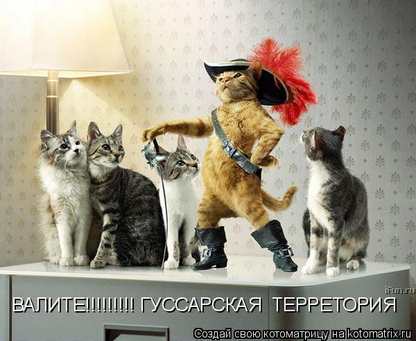 Котоматрица: ВАЛИТЕ!!!!!!!!! ГУССАРСКАЯ  ТЕРРЕТОРИЯ ВАЛИТЕ!!!!!!!!! ГУССАРСКАЯ  ТЕРРЕТОРИЯ