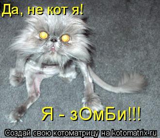 Котоматрица: Да, не кот я! Я - зОмБи!!!