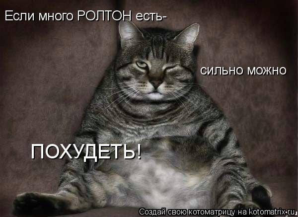 Котоматрица: Если много РОЛТОН есть- сильно можно  ПОХУДЕТЬ!
