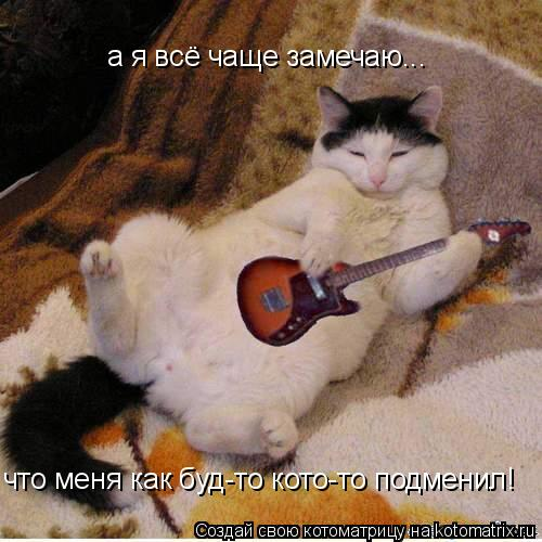Котоматрица: а я всё чаще замечаю... что меня как буд-то кото-то подменил!