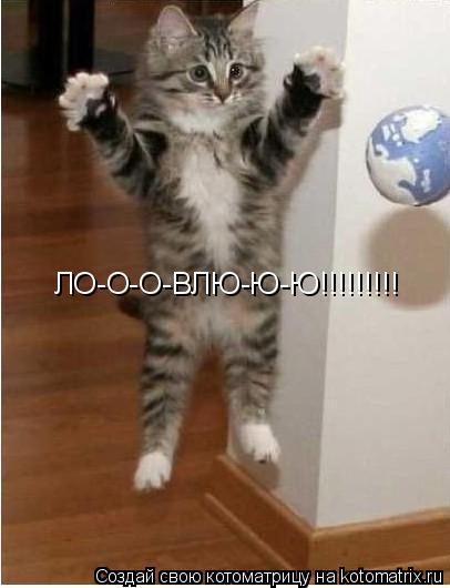 Котоматрица: ЛО-О-О-ВЛЮ-Ю-Ю!!!!!!!!!