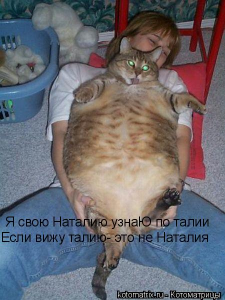 Котоматрица: Я свою Наталию узнаЮ по талии Если вижу талию- это не Наталия