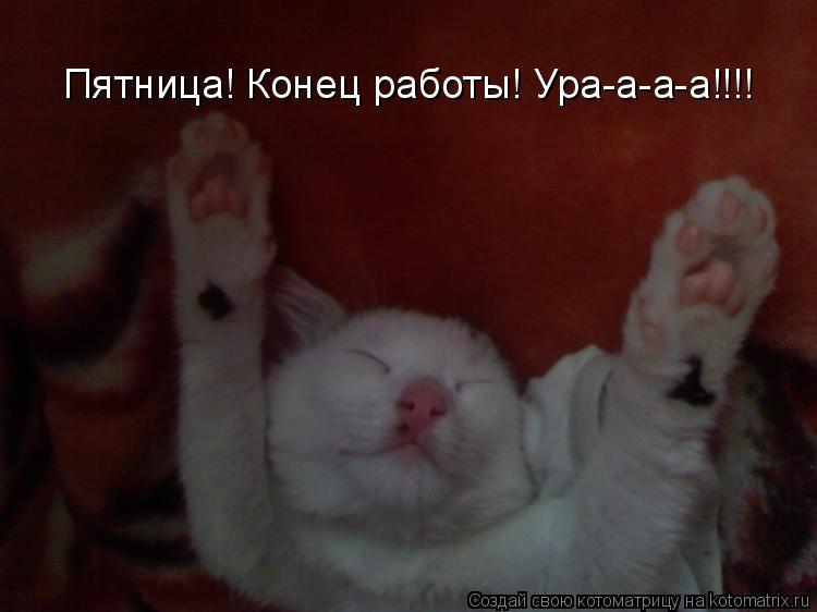 Котоматрица: Пятница! Конец работы! Ура-а-а-а!!!!
