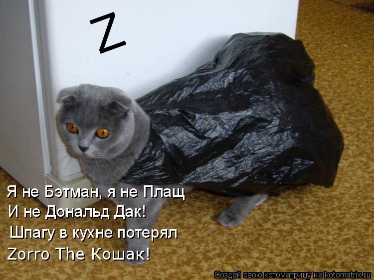 Котоматрица: Z Я не Бэтман, я не Плащ И не Дональд Дак! Шпагу в кухне потерял Zorro The Кошак!