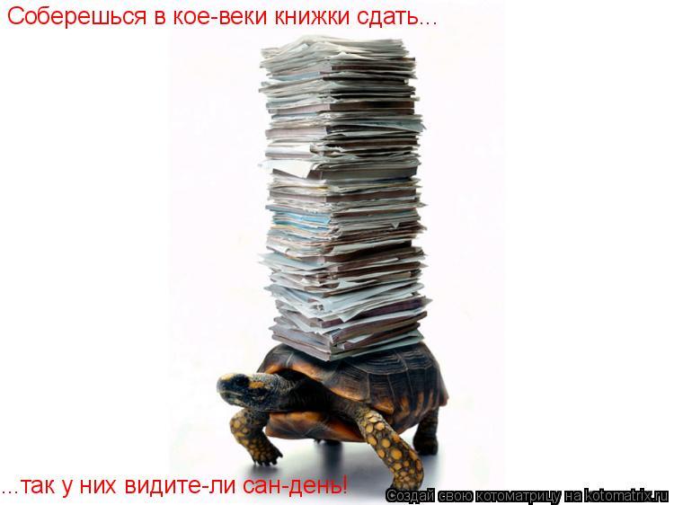 Котоматрица: Соберешься в кое-веки книжки сдать... ...так у них видите-ли сан-день!