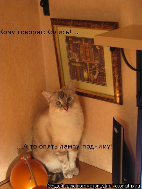 Котоматрица: Кому говорят:Колись!... ...А то опять лампу подниму!