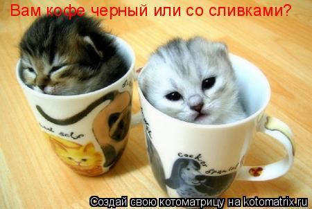 Котоматрица: Вам кофе черный или со сливками?