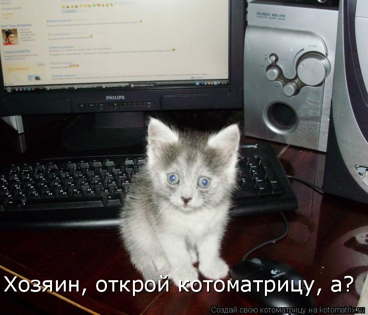 Котоматрица: Хозяин, открой котоматрицу, а?