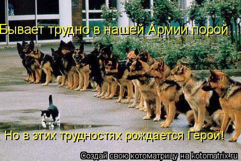 Котоматрица: Бывает трудно в нашей Армии порой Но в этих трудностях рождается Герой!