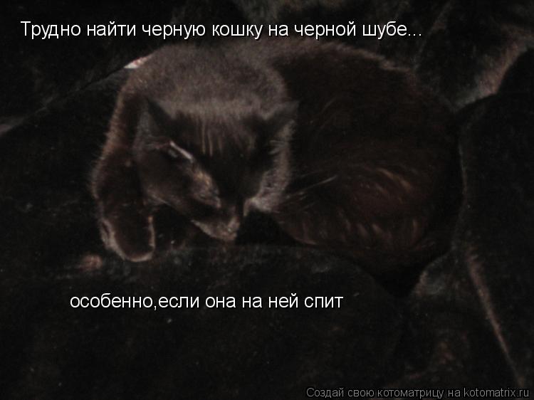 Котоматрица: Трудно найти черную кошку на черной шубе... особенно,если она на ней спит